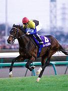 SRA  しちりん中央競馬会