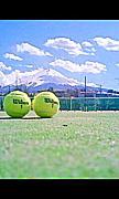 水曜テニスの会(ai)