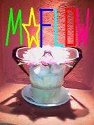 M☆FLOW