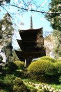 信州の史跡、長野の寺社・城跡