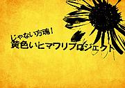じゃない方魂!!黄色いヒマワリ!!