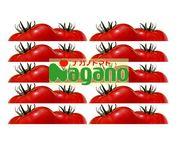 ナガノトマトに惚れてんだよ!