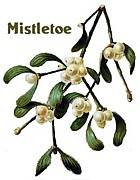 Mistletoe ヒーリング♪in仙台