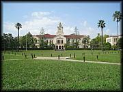 学院大学の輪