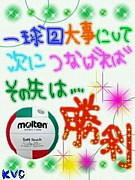 バレー広島&山口 Merry'S