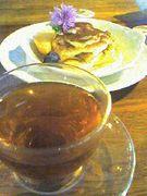 ☆紅茶同盟☆