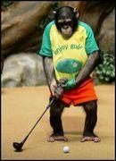 enjoy-golf 関西でゴルフしよ