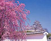 姫路温泉♪