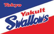 我らが東京ヤクルトスワローズ!