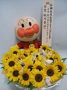 2011年水埜帆乃香生誕実行委員会