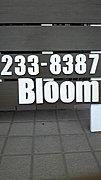 Bloom hairs   姫路美容院