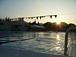 WUST(和歌山大学水泳部)