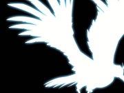 <COD4>PS3クラン【White Raven】