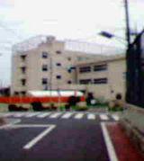 東調布第一小学校115期生