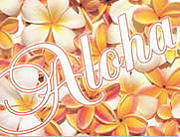 WE LOVE 『 ALOHA!』
