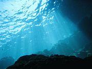 10F Diver's community
