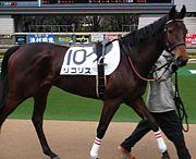 リコリス -競走馬-