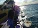 遊漁船 明日乗る人 週末乗る人