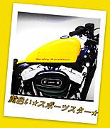 黄色い☆スポーツスター☆