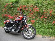 バイクで『街道をゆく』