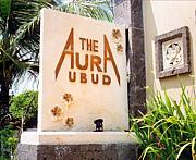 THE AURA /ジ・アウラ