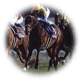 Leading jockey NEO