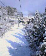 関西から雪山へ向かう人達