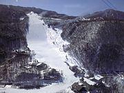 和歌山のスキー好き集まれ♪