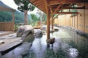 温泉にイクノデス!(・ω・´