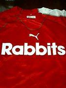 ☆Rabbits☆