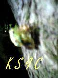 〜 KSFC 〜