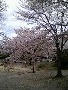 生駒中学校昭和54年度卒業の会