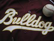 関西大学野球サークルBulldog