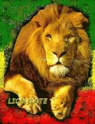 LION NO17