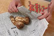 松茸レコード