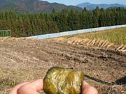 熊野本宮 おおきに農