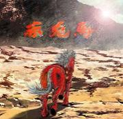焼酎「赤兎馬」会