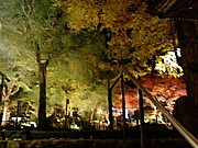 日本の旅パワースポット