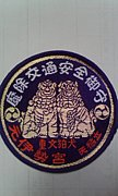 京都の北部でミニベロ乗り