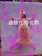 〜過酸化珍化酢〜