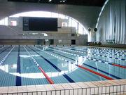 水泳関係Blogの輪