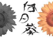 『向日葵』