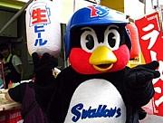 九州ヤクルトスワローズ会