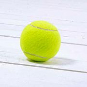 周南テニス