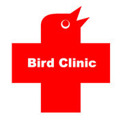 鳥類専門病院 バードクリニック