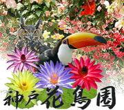 神戸花鳥園オフ会