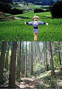 農林業を知る・新しい農林業