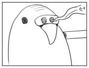 スナック鳥男