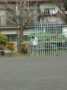 *・゜゚・*公園:*・゜゚・*