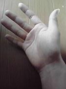 好きな人の手が好き。。